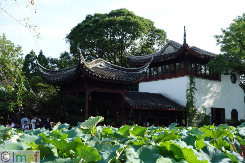 Jardin de l'honorable gouverneur - Suzhou